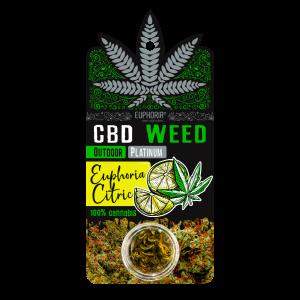 Euphoria CBD Weed Euphoria Citric (Ανθός Κάνναβης)