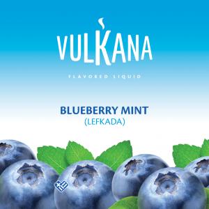 Καπνός Vulkana Virginia 20g + 100ml Blueberry Mint