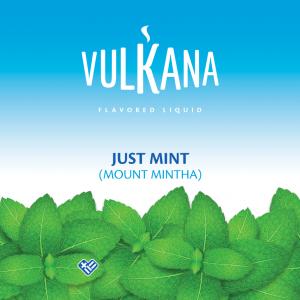 Καπνός Vulkana Virginia 20g + 100ml Just Mint